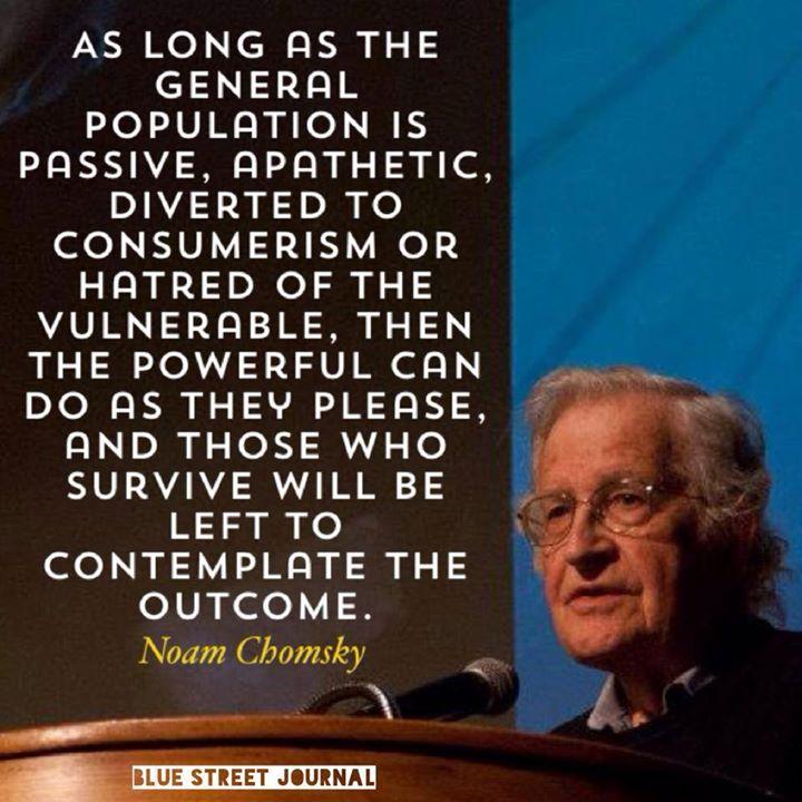 chomsky on passive apathy